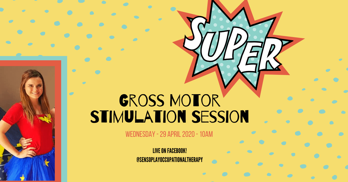 Gross Motor Stimulation Session 2